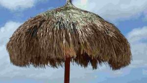 parasol-1292621_1280